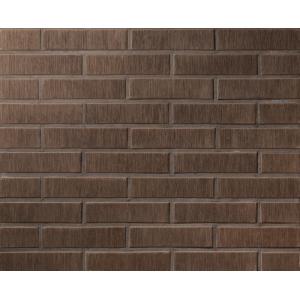 12.203100L Кирпич полнотелый печной Lode Asais Brunis 250x120x65 коричневый штриховой