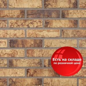 Облицовочный кирпич Daas Baksteen 046 Maplewood / Цена от 1 поддона: 56,09 РУБ